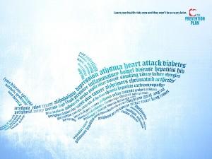 Typography Shark