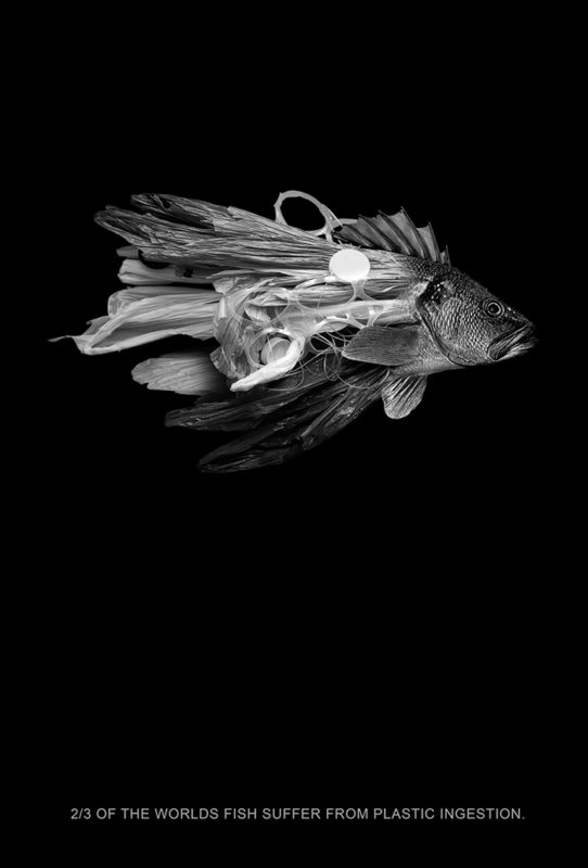 Plastic Fish: Segunda Lamada — 2015 poster, winner in the 2014 HOW Poster Design Awards, was made by Scott Laserow.